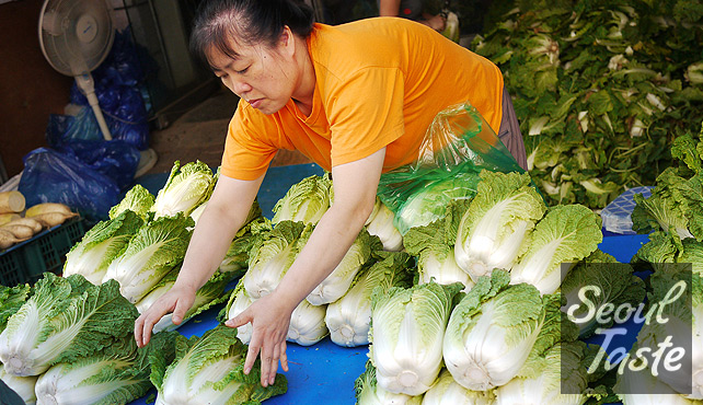 배추 (Korean cabbage, aka Napa cabbage), also sold by the pile (10000원)